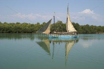 Traditional sailing boat Morondava Madagascar