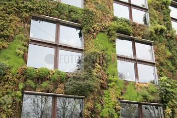 Vertical garden of the Musée du quai Branly at Paris France