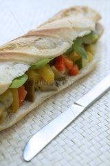 Sandwich Hero Moroccan with vegetables and spices