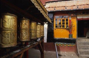 Chat de gouttière assis devant une fenêtre de temple Tibet