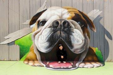 Japonaise devant une peinture murale de chien Tokyo Japon