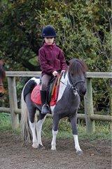 Girl on a pony France