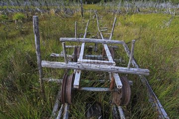Wooden cart rolling on wooden rails in Chilean Patagonia