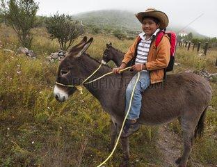 Schoolboy on a donkey - Guanajuato Mexico