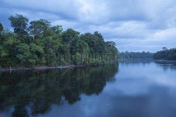 Araguari river at dusk - Reserve Flona Amapa Brazil