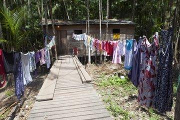 Traditional house ribeirinhos - Amapa Brazil Amazon