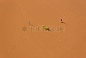 Tourists on the Dune 45 - Namib Desert Namibia