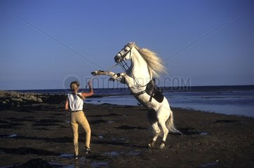 Rider doing her nose gray horse on the beach France
