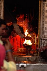 Prayers and offerings - Temple Karni Mata India