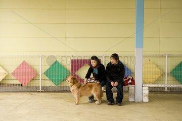 Couple caressant un chien loué à Tokyo Japon