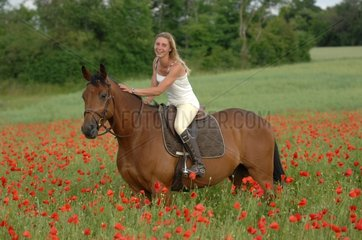 Rider woman on horse in field of poppies - France