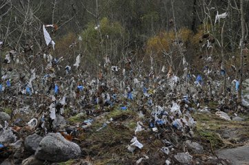 Plastic bags on the bank after a flood - France