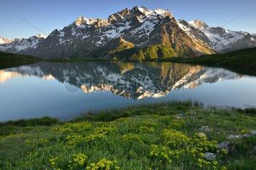 Reflecting the Meije lake Pontet - Alpes Ecrins France