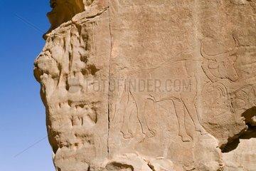 Rupestral engraving Inzouaten Tassili N'ajjer Algeria