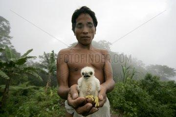 Hunter and prey found Tau't Batu Palawan Philippines