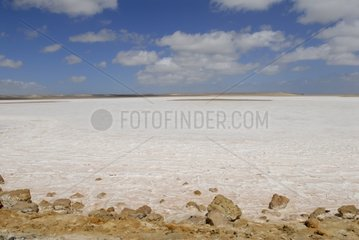 Saltworks in the desert of Vizcaino