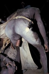 Buffoon petor Koma doyo Mounts Alantika Nigeria