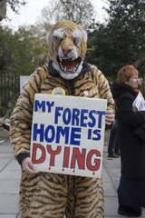 Person in Tiger costume protesting against climate change