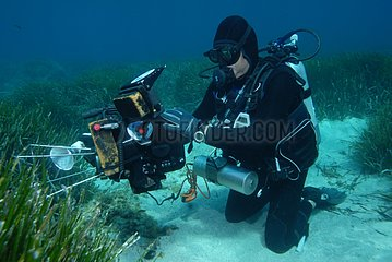 Diver filming seagrass Embiez Mediterranean Sea France