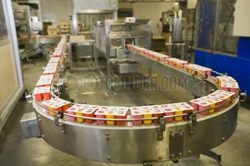 Chain of production of dairy produces at Factory Nicolait