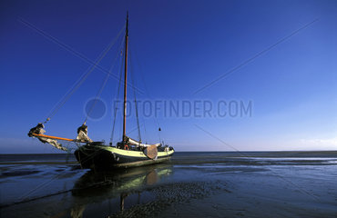 Terschelling  a traditional sailing boat called flat on the noordsvaarder tidal sand plate