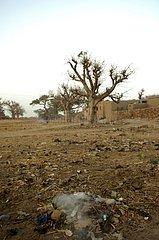 Garbage dump in a Malian village