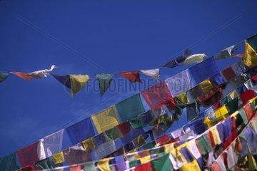 Drapeaux à prières flottant au vent Ladakh Inde