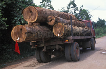 Transport of tropical wood