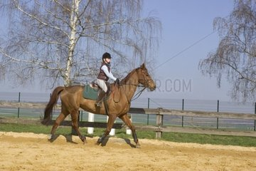Young rider riding the trot in the arena France
