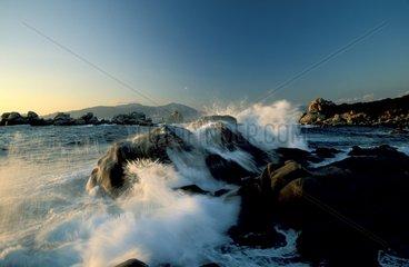 Côte rocheuse Golfe d'Ajaccio Corse France