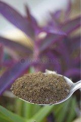 Provision of fertilizer flour feathers