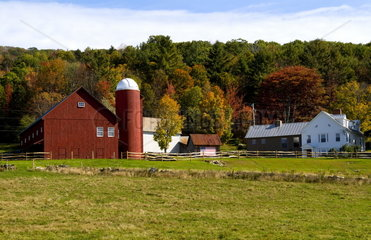 Farm in fall color foliage in Weston Vermont
