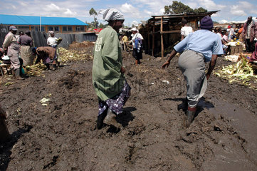 General picture of slum dwellers in Toi Market within the sprawling Kibera slums in Nairobi November 23  2006. Over three thousand petty traders with no formal training in small bussineses trading have come together and are raising more than 1 million Ken
