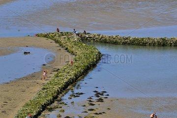 Pêcherie de la Tranchée on Plat Gousset beach - France