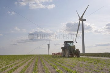 Passage of self-directional hoeing-machine in a beet field