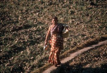 NEPAL : Early winter morning  Kathmandu Valley.