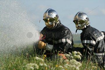 Firefighters in office in a field in bloom France