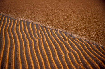 Sand dunes at Jalapão desert in Brazil ( Tocantins State ). Background texture  pattern  raise  projection  salience  relief  relievo  warm  hot.