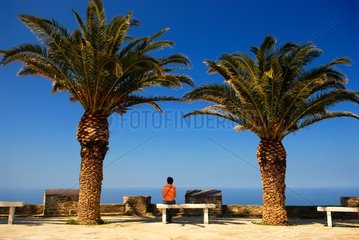 Tourist and Palm trees to Canari Cap Corse St Florent Gulf