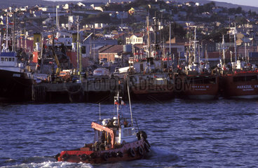 Fishing boats in Punta Arenas  Chile. Economy  South America  Latin America.