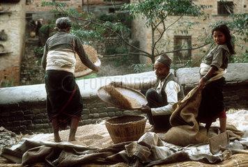 NEPAL : Bhaktapur. Kathmandu Valley. A Newari family is husking rice on the porch of their house.