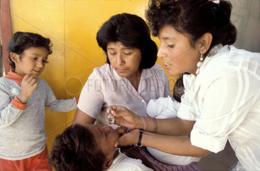Mexico  Baja California; a doctor carefully vaccinating a child in a clinic  putting small drops from a pipet into the mouth