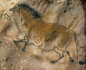 Peintures rupestres de Lascaux avec Cheval sauvage France