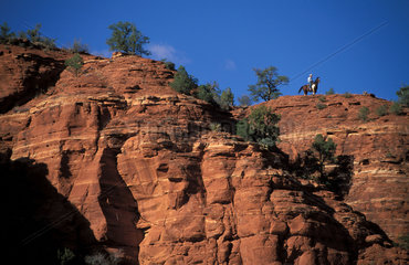 Arizona cowboy on horseback on the look out on a rock in Red rock country Sedona