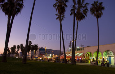 Sunset view with palm trees of Venice Beach California at night showing shops and nightlife with time exposure
