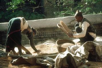NEPAL : Bhaktapur. Kathmandu Valley. A Newari couple is husking rice on the porch of their house.