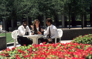 Business meeting between women and men of mixed races outdoors at lunch in beautiful flower setting as they discuss business and career decisions