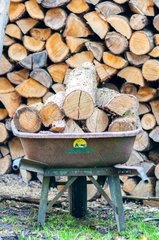 Wood firing in a wheelbarrow in a garden