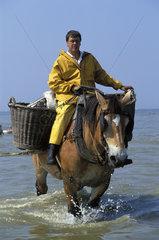 Oostduinkerke  shrimp fishermen