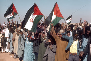 West Sahara : Polisario. Political manifestation of the rigth for a own country. Political rally in the desert.